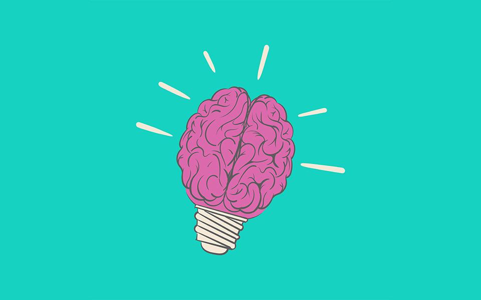 maak gebruik van breinkennis